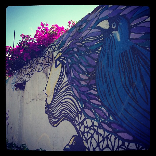 Street art in Oaxaca.