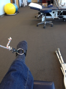 An exercise at physical therapy - pulling a weight on a rope by bending my foot.