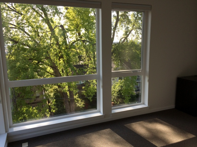 Floor to ceiling windows and lots of trees.