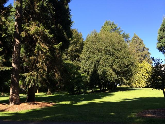 Volunteer Park, Seattle.