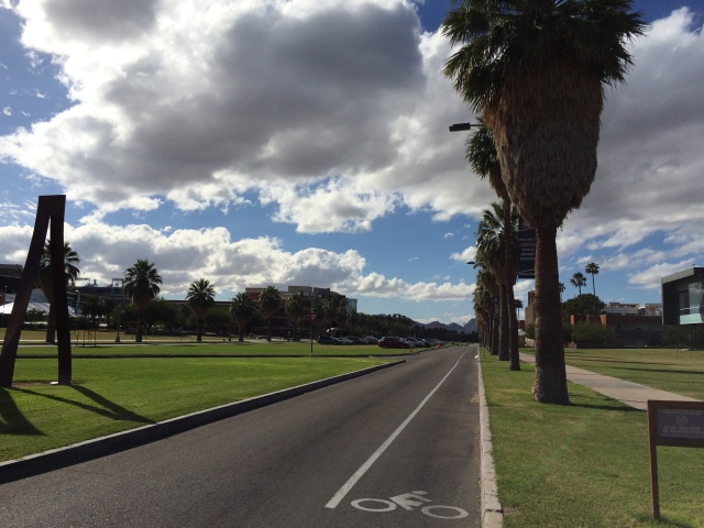 Bike lane on U of A campus.