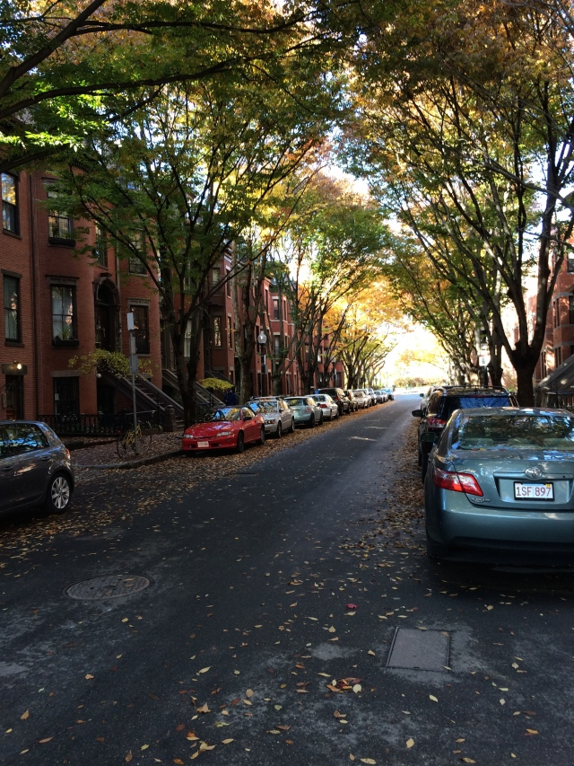 A street in Boston's South End.