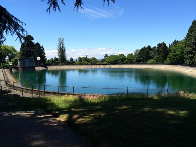 Volunteer Park in Seattle