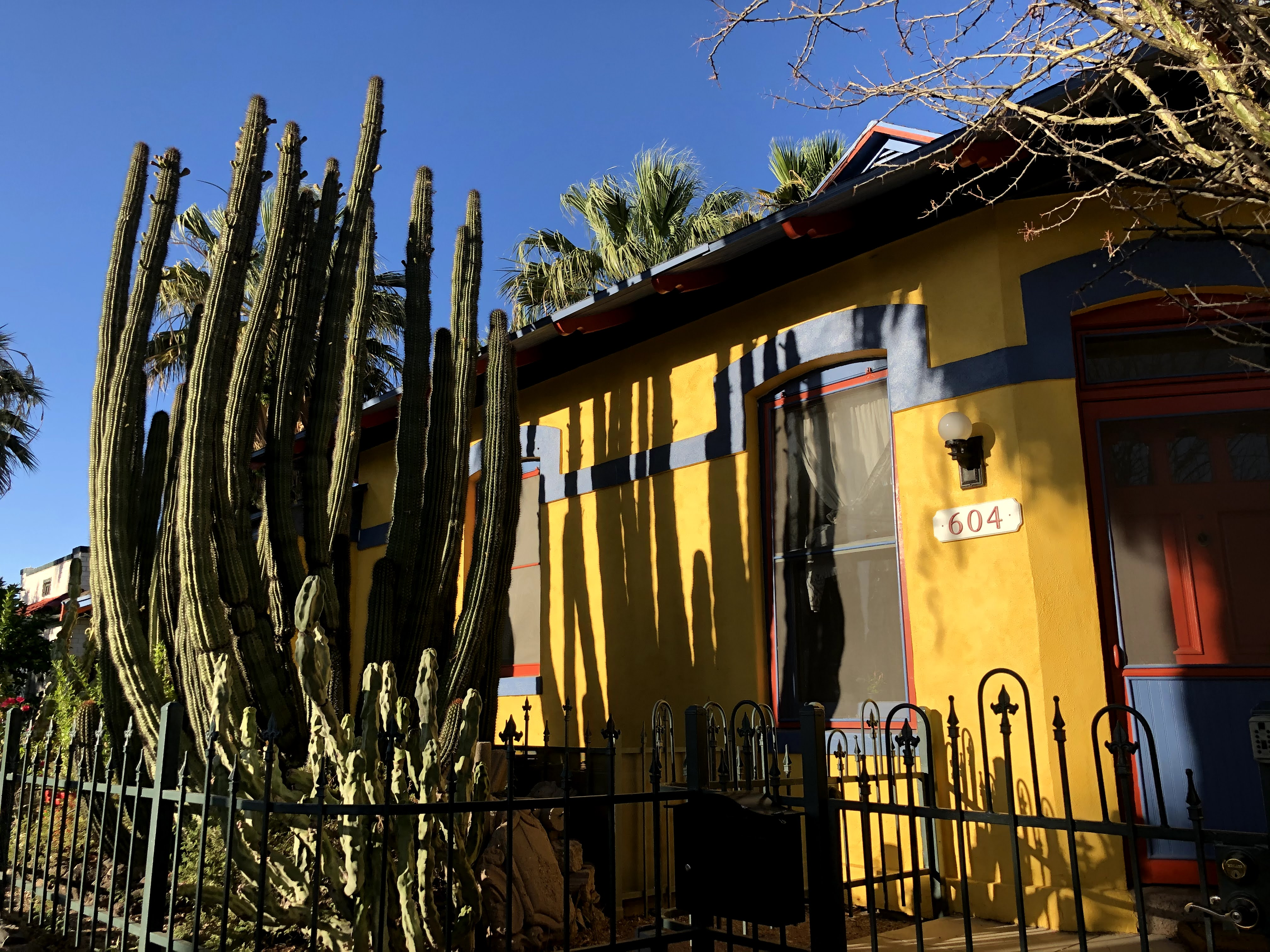 yellow house with huge cactus in front